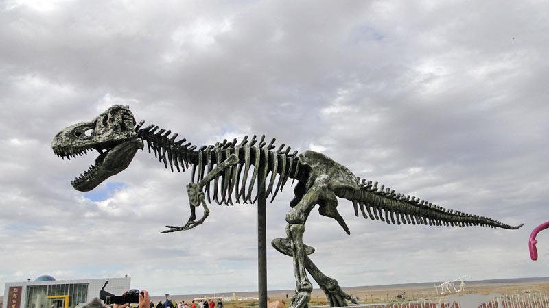Transsibirische Eisenbahn: China - Erlian, Dinosaurierfriedhof