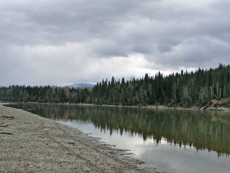 Fraser River Longworth