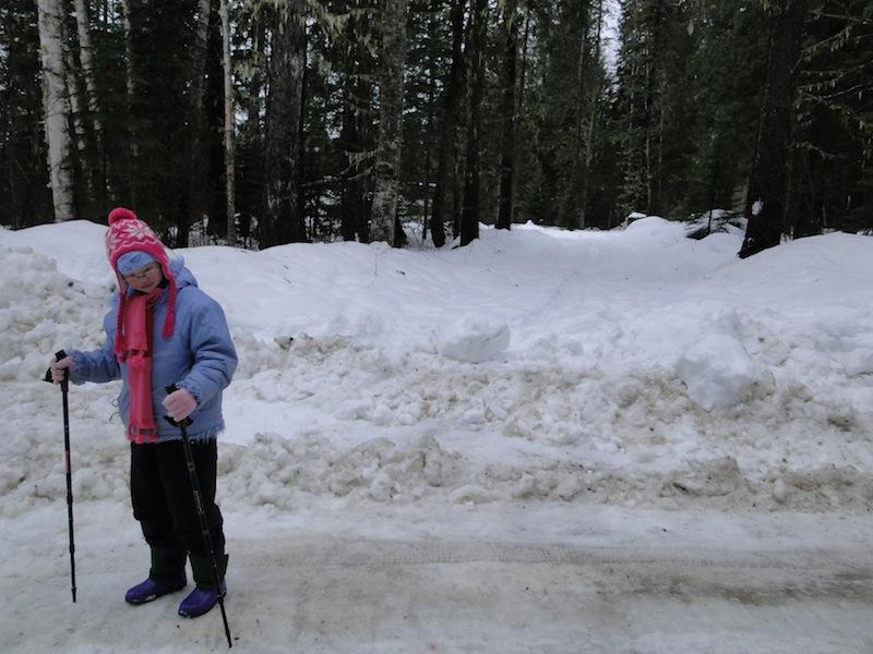 mit Schnee zugeraeumte Einfahrt