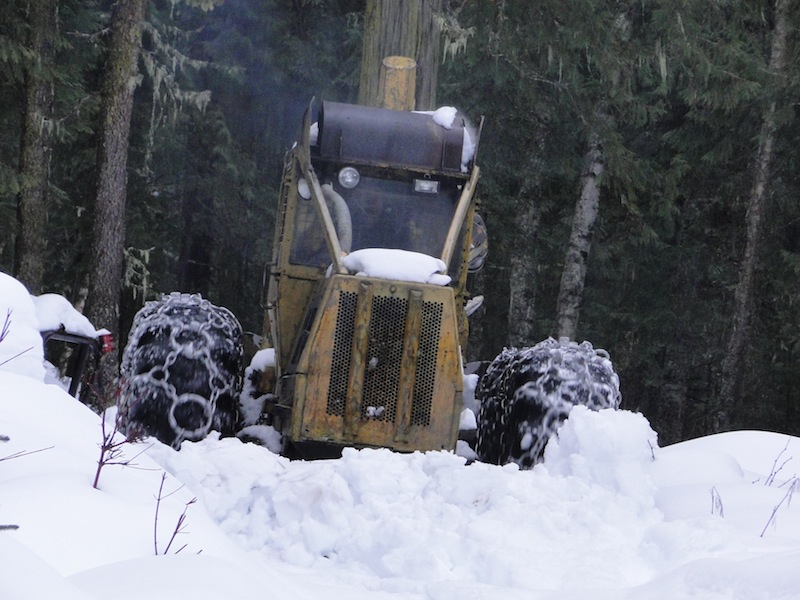 Skidder in Action