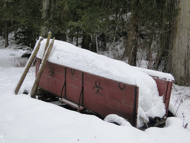 horse-drawn carriage in snow (British Columbia)