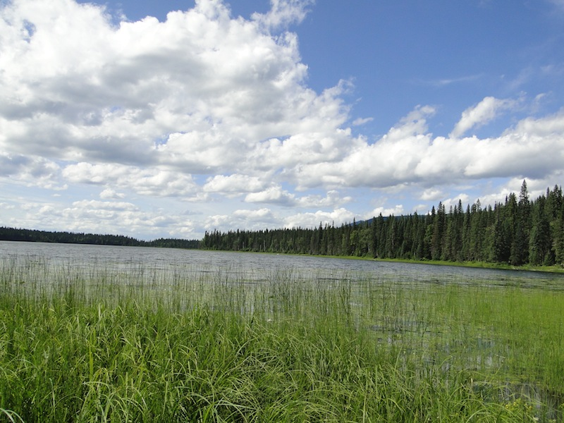 Toneko Lake