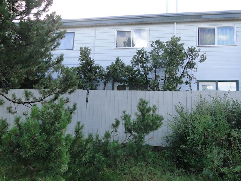 Fionas Mini-Terrasse hinter dem Zaun