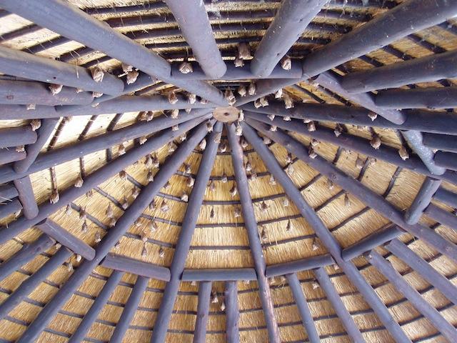 Unterm Dach hängen die Fledermäuse
