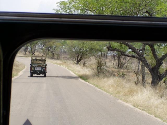 Safarie in einem offenen Jeep mit vier Personen