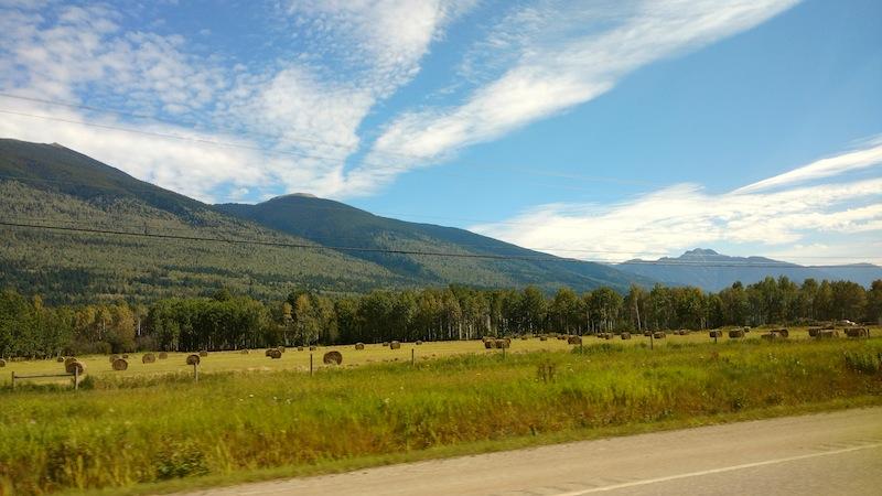 Berge Farm