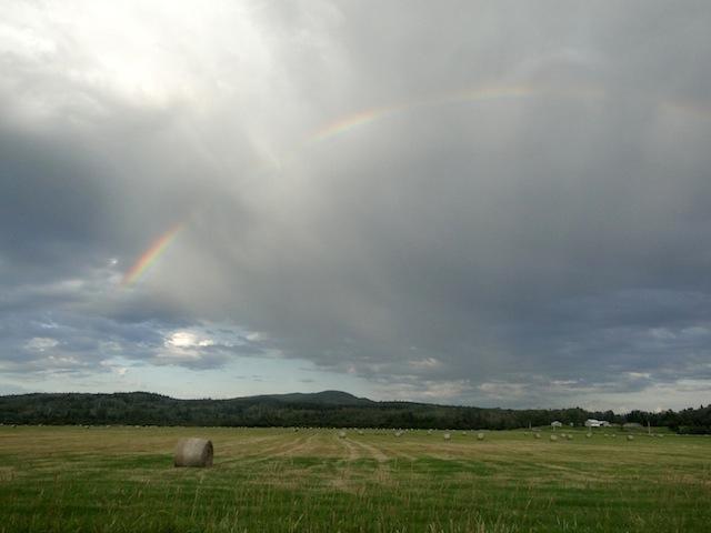 Regenbogen in Giscome