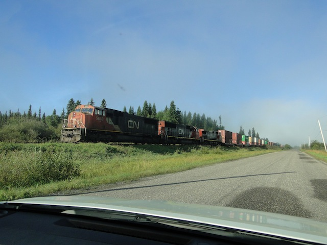 Containerzug in Newlands